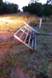 Storm damage - July 10