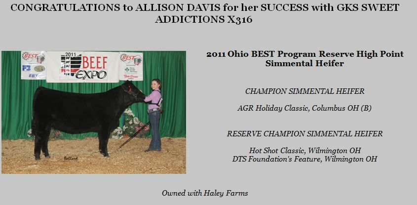 CONGRATULATIONS to ALLISON DAVIS for her SUCCESS with GKS SWEET ADDICTIONS X316 , 2011 Ohio BEST Program Reserve Simmental Heifer