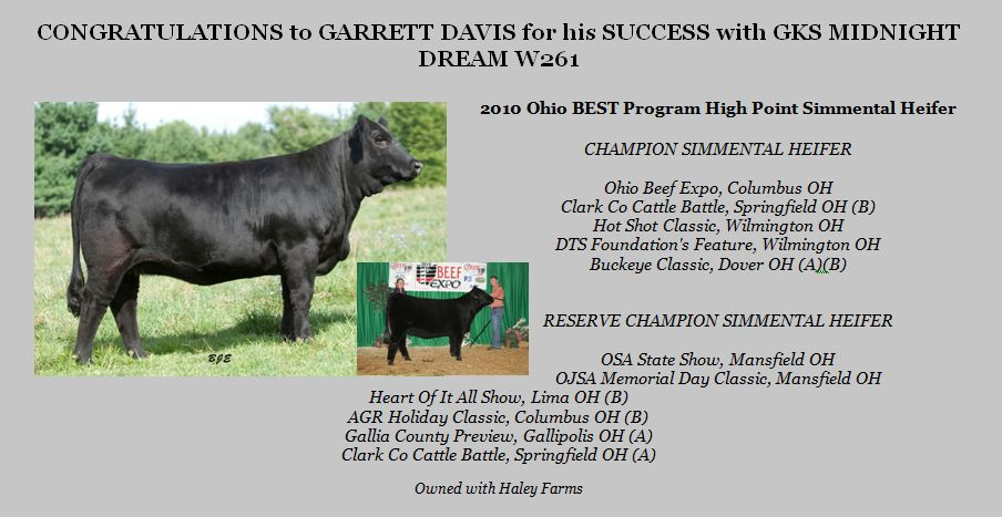 Garret Davis with GKS Midnight Dream W261, 2010 Ohio BEST Program High Point Simmental Heifer